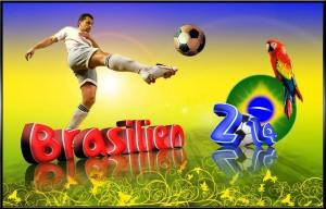 Fifa_WM_2014