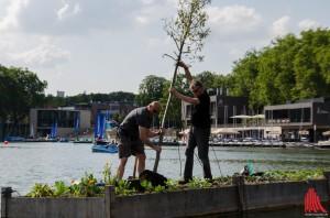 Künstler Weppelmann (re.) stellt mit tatkräftiger Unterstützung von Dr. Andreas Mussenbrock, einem Freund, seinen Baum wieder auf. (Foto: th)