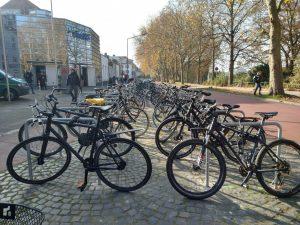 Die Möglichkeiten des Fahrradparkens erweitern sich in Münster kontinuierlich, wie hier an der Bismarkallee. (Foto: Stadt Münster / Presseamt)