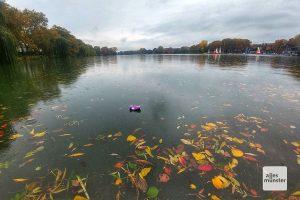 Für das Laienauge vollkommen unsichtbar: das sensorunterstützte Aasee-Monitoring. (Foto: Michael Bührke)