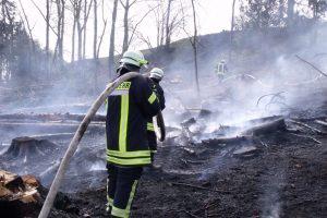 Die Feuerwehr bei Löscharbeiten eines Waldbrandes. (Foto: Wald und Holz NRW)