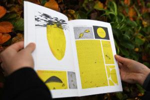 Darin erläutert sie die Hintergründe des Bienensterbens. (Foto: FH Münster/Stefanie Gosejohann)