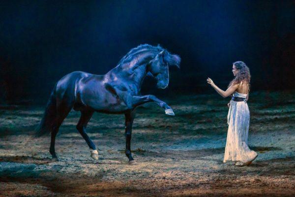 """Freiheitsdressur von Kenzie Dysli in der Show """"Legende der Wüste"""". (Foto: ©CAVALLUNA)"""