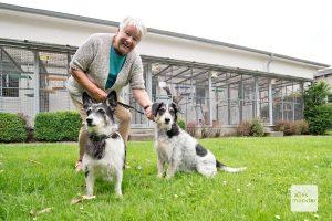 Doris Hoffe ist seit 1990 Vorsitzende des Tierschutz-Vereins Münster. (Foto: Michael Bührke)