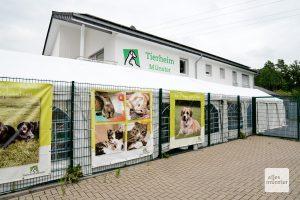 Das Tierheim an der Dingstiege existiert seit 1957. (Foto: Michael Bührke)