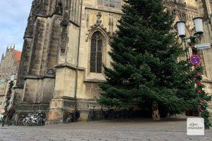 Viele Laternenpfähle werden wie in die Jahren zuvor mit Weihnachtsschmuck umwickelt (Foto: Jasmin Reghat)