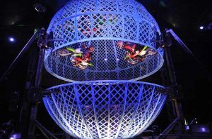 """Diorio's Team in der Motorradkugel """"Splitting Globe"""". (Foto: Charles Knie)"""
