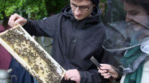 Hobbyimker Steffen Schmidt erklärt im Campusgarten die Entwicklung des Bienenvolkes. (Foto: FH Münster/ Oecotrophologie – Facility Management)