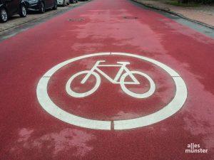 Die Stadt Münster hat mit den Fahrradstraßen nach neuem Qualitätsstandard den 2. Preis des deutschen Fahrradpreises gewonnen. (Archivbild: Stephan Günther)