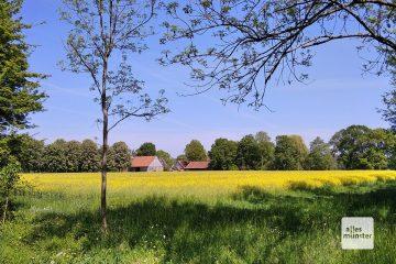 Auf dem Weg zu den Highlights gibr es immer wieder jede Menge Münsterland zu entdecken. (Foto: Marc Pinnekamp)