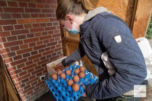 Die Eier werden direkt am Hof verkauft und haben eine große Fangemeinde (Foto: Michael Bührke)