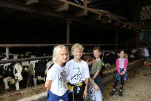 Auf dem Hof Mindrup in Wolbeck konnten Grundschüler in der vergangenen Woche Landwirtschaft hautnah kennenlernen. (Foto: WLV e.V.)