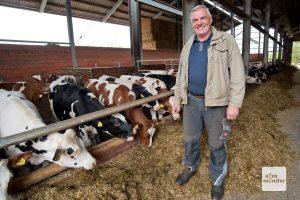 Nur dank neuer Ventilatoren geht es den Kühen auch im Sommer in den Ställen gut. (Foto: Michael Bührke)