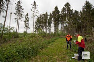 Hier stand mal ein Fichtenwald. Der Borkenkäfer hat kurzen Prozess gemacht. (Foto: Michael Bührke)
