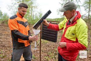 Max Bein (l.) und Martin Kleining beim Leeren der randvollen Borkenkäferfalle. (Foto: Michael Bührke)