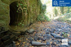 Viele Fließgewässer Münsters, wie hier der Kinderbach, sind im Sommer über lange Strecken nur noch trockene Gräben. (Foto: Michael Bührke)