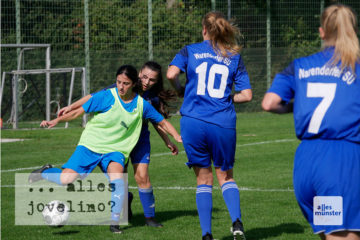 Frauenfußball steht zu Unrecht im Schatten des Männerfußballs, meint die Autorin Marion Lohoff-Börger. (Foto: Ralf Börger)