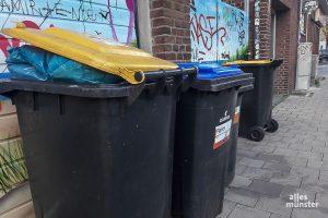 Im nächsten Jahr sollen die Abfallgebühren in Münster um rund 6,7 Prozent angehoben werden. (Foto: Ralf Clausen)