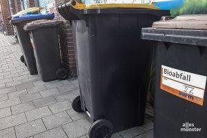 Um die Ostertage verschieben sich die Termine der Müllabfuhr. (Archivbild: Ralf Clausen)