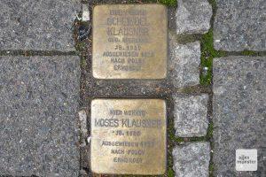 """Stolpersteine in der Jüdefelderstraße. Schon 1938 wurden viele Münsteraner als sogenannte """"Asoziale"""" von den Nazis deportiert. (Foto: Marion Lohoff-Börger)"""