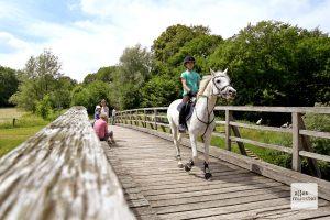 Die Holzbrücke über die Ems ist bei Radfahrern, Wanderern und Reitern gleichermaßen beliebt (Foto: Michael Bührke)