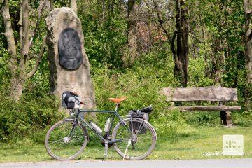 Ein Gedenkstein aus Baumberger Sandstein mit einem Porträt der Annette. (Foto: Michael Bührke)