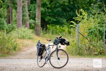 Überwiegend sind die Waldwege gut zu befahren. (Foto: Michael Bührke)