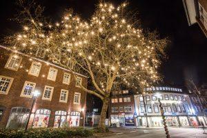 11.000 LED-Lichter an 50 Bäumen sorgen für weihnachtlichen Glanz. Zum Leuchten bringt sie Ökostrom. (Foto: Stadtwerke Münster)