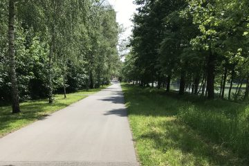 An dieser Fahrradstraße installiert das Amt für Mobilität und Tiefbau eine intelligente Beleuchtung. (Foto: Stadt Münster)