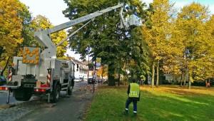 An der Promenade steht der erste Baum, der mit den Lichterketten geschmückt wird. (Foto: Stadtwerke)