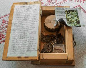 Jedes Buch enthält im Inneren Blätter, Nadeln, Früchte und Samen sowie eine ausführliche Beschreibung der jeweiligen Holzart. (Foto: Simon Hausstetter)