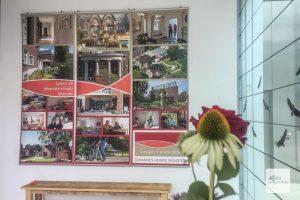 Die Ausstellung des Johannes-Hospiz läuft noch bis zum 26. August. (Foto: Thomas Hölscher)