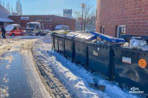Damit die Müllabfuhr wieder anlaufen kann, bitten die AWM, die Zugänge zu den Tonnen freizuräumen oder diese gesammelt an die Straße zu stellen. (Foto: Thomas Hölscher)