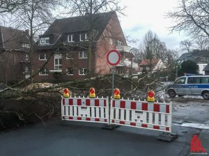 Im Stadtgebiet stürzten schätzungsweise 50 Bäume um. (Foto: th)