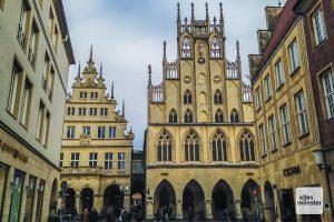 Am Abend wurde im Rathaus bei der Ratssitzung der Klimanotstand für Münster ausgerufen. (Archivbild: Thomas Hölscher)
