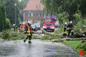 Umgestürzte Bäume, wie hier an der Dechaneischanze beim einem vergangenen Sturm, beschäftigten auch heute die Einsatzkräfte. (Archivbild: th)