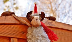 Weihnachts-Hangover? WIr haben Alternativen für euch. (Foto: CC0)