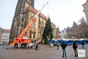 Der große Kran der Berufsfeuerwehr Münster richtete am Morgen die Weihnachtstanne auf dem Lambertikirchplatz auf. (Foto: Michael Bührke)